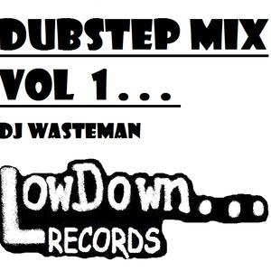 DUBSTEP VOL 1 - DJ WASTEMAN (LOWDOWN RECORDS)