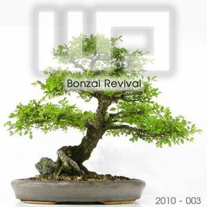 Bonzai Revival