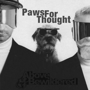 Above & Bewildered - Paws For Thought - January 2017