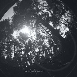 my_Ler - New Year mix (for DJ Marathon DJSTATION.RU)