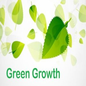 Green Growth Project Interview