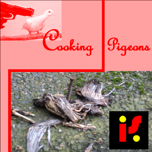 Cooking Pigeons