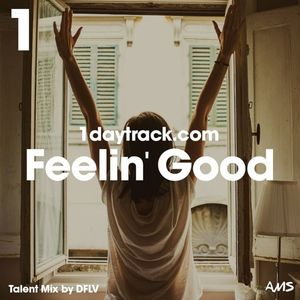 Talent Mix #51 | DFLV - Feelin' Good | 1daytrack.com