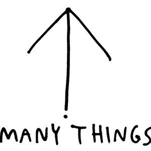 Many Things Interview