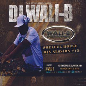 DJ Wali-B Soulful House Mix Session Pt 15