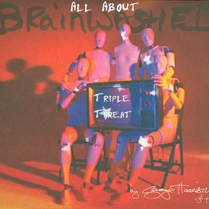 """Episode 4: All About """"Brainwashed"""" by George Harrison - Part 1"""