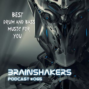 Brainshakers podcast #065