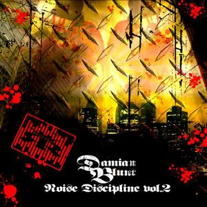 Noise Discipline II