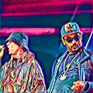 Dub 2 Jungle Riddim Mix
