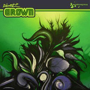 Robust - Grown (Album Megamix) 2009