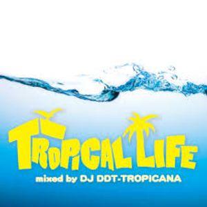 TROPICAL LIFE mixed by DJ DDT-TROPICANA