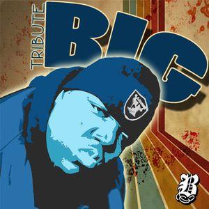 Tribute B.I.G