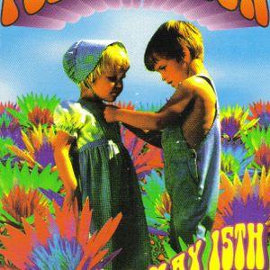 Pollenation 1 Mindrive May 15, 1993