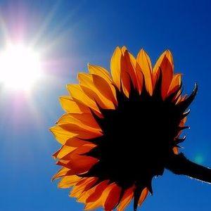 LE retour du Soleil