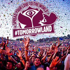 Tomorrowland 2013 - David Guetta, Afrojack, Nicky Romero and Steve Aoki