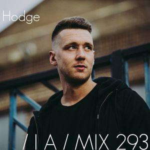 IA MIX 293 Hodge