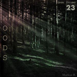 woods.21.08.2015