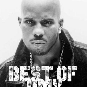 Best of DMX