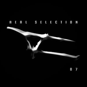 Real Selection 07