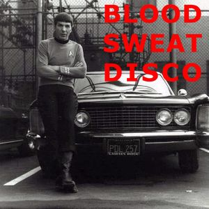 Blood Sweat and Disco