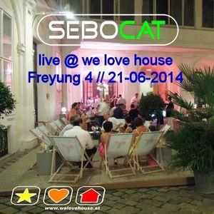 Sebocat - live @ we love house - Freyung 4 // 21-06-2014