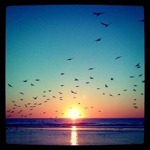 sunrise on the beach...