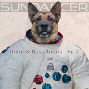 Sundancer's Drum & Bass Treats - Ep. 2