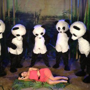porn panda Morning Edition' Returns: Panda Porn : NPR.