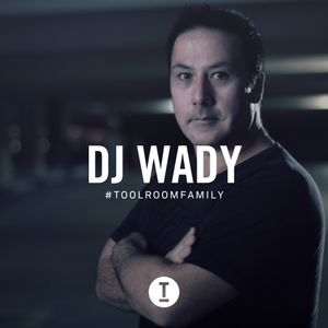 Toolroom Family - DJ Wady (DJ Mix)