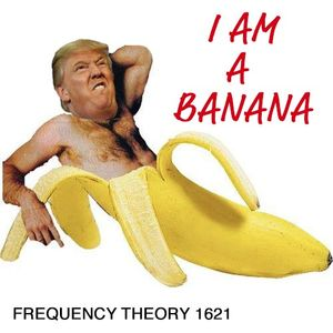 "Frequency Theory 1621 ""I Am a Banana"""