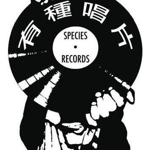 Species Records Live Sessions