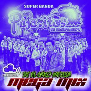 DJ El Chico Mezcla Los Pajaritos De Tacupa Mich. Mega Mix 2017