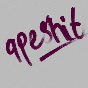 DJ Apesh!t's Hip Hop Mix
