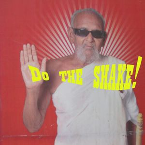 Do the Shake by Kev