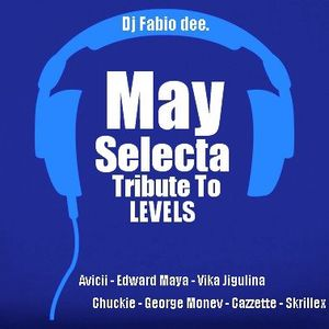 May Selecta Tribute To LEVELS by Dj Fabio dee.