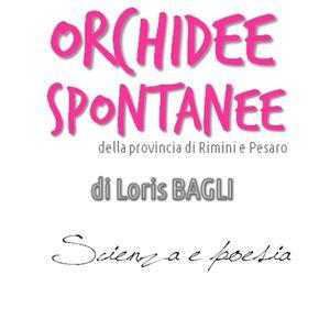 Orchidee Spontanee di Loris Bagli – 12 luglio, Gabicce Monte