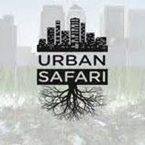 dj farhan - urban safari mix