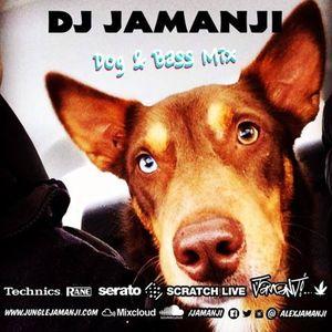 Dog & Bass Mix