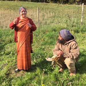 Vandana Shiva on Genetically Modified Organisms