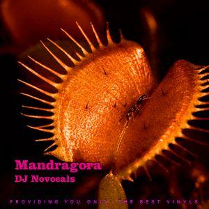 Dj Novocals Mandragora By Dj Novocals Mixcloud