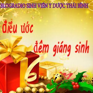 Số 12 - Điều ước đêm giáng sinh - BlogRadio Sinh viên ĐH Y Dược Thái Bình