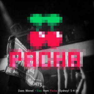 Dave Winnel - Live @ Pacha (5-4-14)