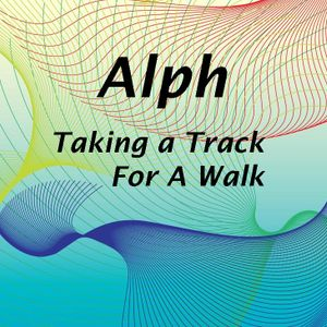 Taking A Track For  Walk