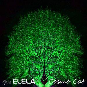 Cosmo Cat (psytrance mix)