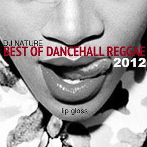 DJ NATURE // BEST OF DANCEHALL REGGAE 2012