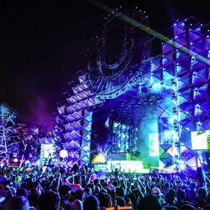 Road 2 Ultra Music Festival Miami !