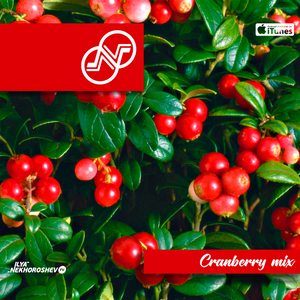 Ilya Nekhoroshev - Cranberry Mix