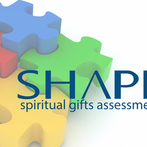 Finding Your SHAPE: The Priority of Ministry