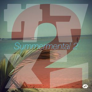 Summermental 2 [chill,ambient,lounge tracks]