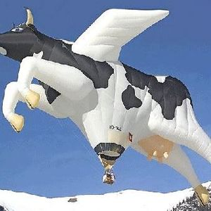 Milk The Cow Competition DJ Mix